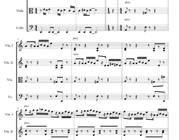 Variations on a Paganini's theme (N. Paganini) - Sheet Music