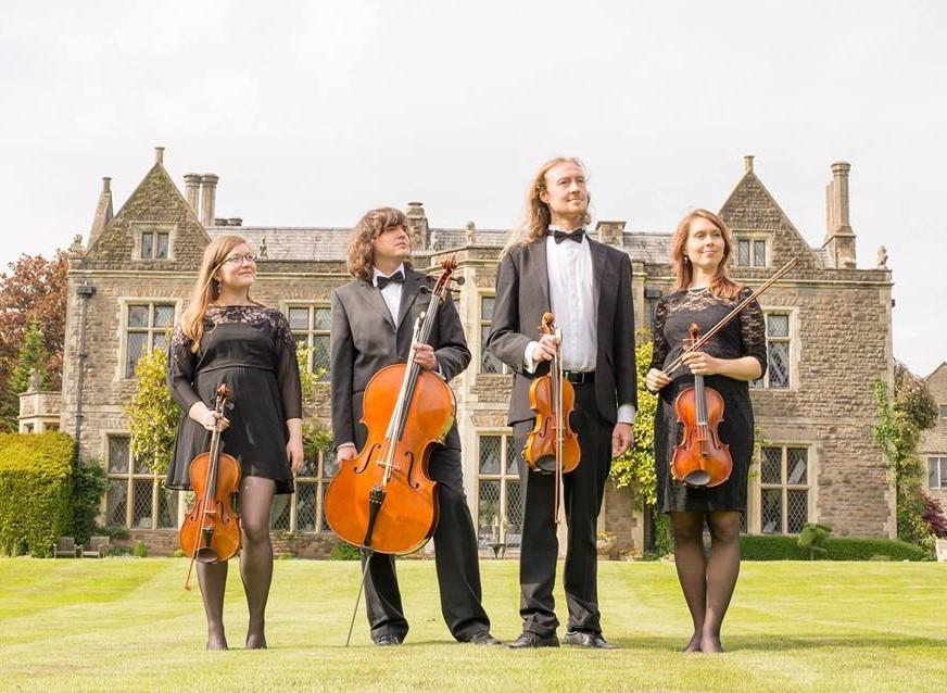 Aderyn String quartet photo