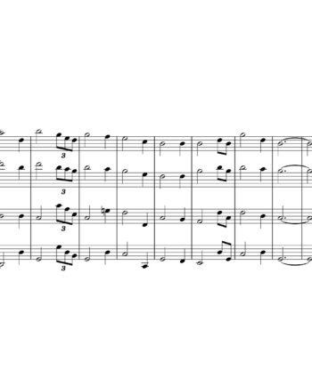 John Newton - Amazing Grace - Sheet Music for String Quartet - Music Arrangement for String Quartet
